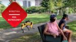 przenosnepl robot spot patroluje park w Singapurze