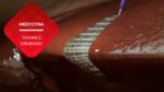 przenosnepl_druk 3D wewnątrz organizmu