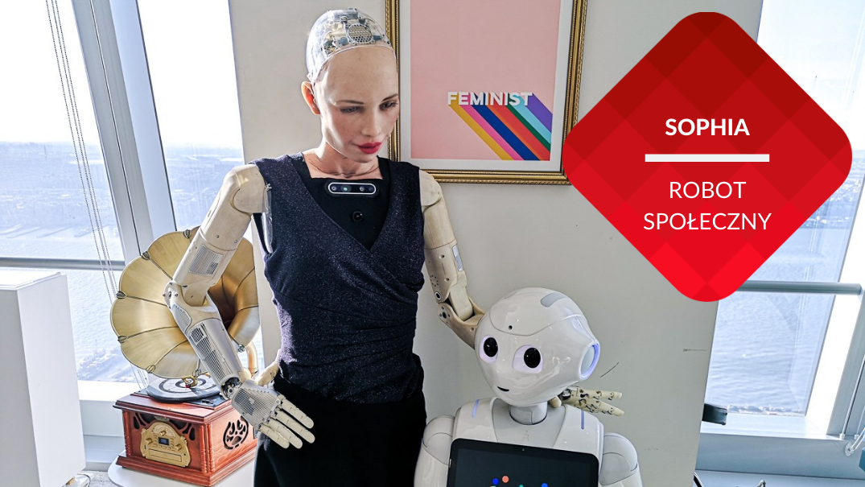 przenosnepl_robot sophia z innym robotem w biurze