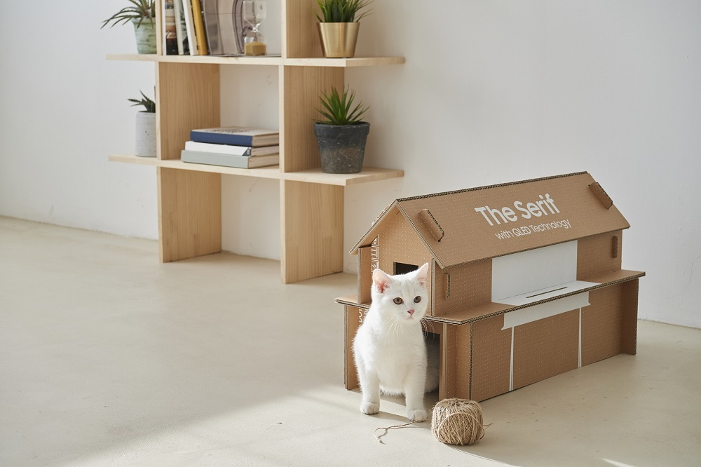 cat's home made of Samsung TV box