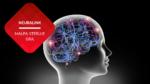 przenosnepl_wizualizacja sztucznych połączeń neuronowych neuralink ludzki mózg